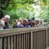 CDU: Toller Spaziergang im Pinnau-Biotop