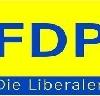 Sonnabend: FDP-Party auf dem Rhen