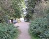 Polizei: Drei Männer springen am Hundeauslauf aus einem Busch und überfallen Frau!