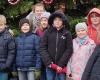 10 Jahre bunte Weihnachtstanne in Henstedt-Ulzburg!