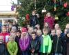 Weihnachtszeit eingeläutet: Auf dem Marktplatz steht die Weihnachtstanne