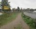 Nach Beschluss Trampelpfad zu asphaltieren: Grüne warnen vor Hitze am Bahnbogen