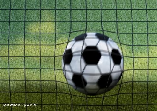 Fußball_Netz