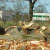 Kahlschlag wegen Rewe-Versandfabrik